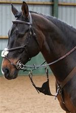 This bib attachement can be added to any martingale or breastpate in order to limit the horse from raising their head too high and stops any unwanted loose leather work getting in the way when worn. This bib attachment can be used in a variety of dis