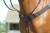 features a loop to hold martingale in place, clips to attach d-rings.  brass fittings and signature badge