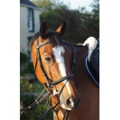 prestige e 37 flash bridle