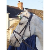 prestige e111 sorrento evo flash bridle